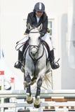 Salto equestre da mostra Fotos de Stock Royalty Free