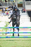 Salto equestre da mostra Foto de Stock