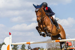 Salto equestre della ragazza del cavallo Fotografia Stock Libera da Diritti