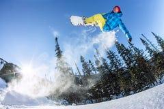 Salto freerider do Snowboarder de uma rampa da neve no sol em um fundo da floresta e das montanhas Imagem de Stock Royalty Free