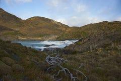 Salto grandioso, parque nacional de Torres del Paine, o Chile Imagem de Stock