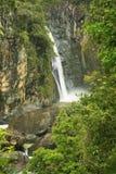 Salto Jimenoa Uno waterfall, Jarabacoa Stock Image