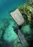 Salto libre en el océano con el coral Imagen de archivo libre de regalías