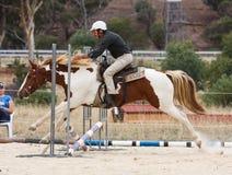 Salto occidental del caballo Fotos de archivo libres de regalías