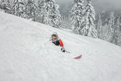Salto parasitario del esquiador de una rampa de la nieve en el sol en un fondo del bosque y de montañas Imagenes de archivo