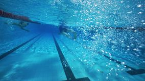 Salto subacuático, natación del hombre en agua clara de la piscina metrajes