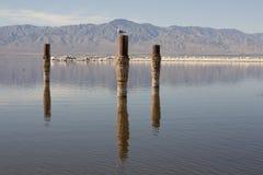 Salton海运柱子 免版税库存照片