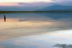 Salton hav Arkivfoton
