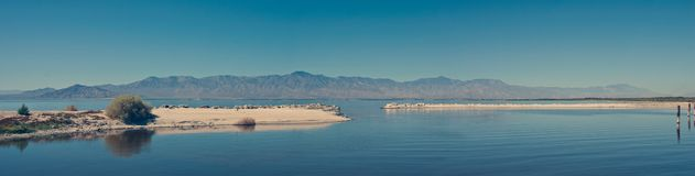 Salton havshorisont arkivbild