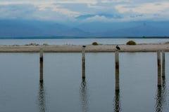 Salton Morze zdjęcia stock