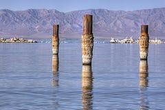 Salton Sea Bombay Beach Stock Photography