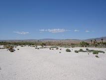 Salton Sea, California. Desert Landscape Stock Photography