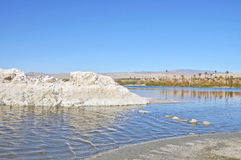 Salton Sea: Marina Inlket. Even though it is now silted over and shallow, with a little imagination you can see that this was once the inlet to an active marina Stock Image
