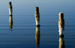 Salton Sea Pilings. Salt covered pilings in the Salton Sea, Southern California stock image