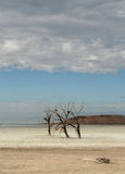 Salton Sea Salt Flats and Red Hill Royalty Free Stock Photos