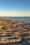 Salton Sea Sunset stock images