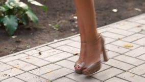 Saltos altos bege dos pés 'sexy' que andam na rua da cidade vídeos de arquivo