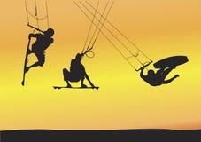 Saltos de Ariel do embarque do papagaio Foto de Stock