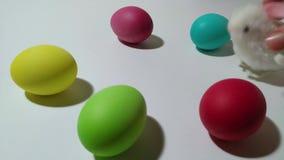 Saltos mecánicos del conejito de la conclusión entre los huevos de Pascua 2