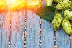 Saltos verdes, malta, en una tabla vieja de madera Fotos de archivo libres de regalías