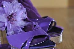 Saltos violetas com flor Fotografia de Stock Royalty Free