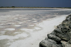 Saltpan auf Bonaire stockfotografie