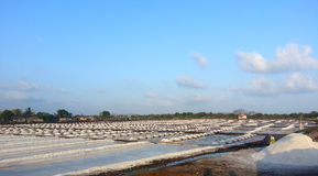 Saltpan. Big salt pans in India, coastal areas of Mumbai Royalty Free Stock Photography