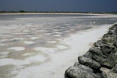 Saltpan op Bonaire stock fotografie
