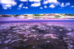 Saltpan. With outstanding colors in La Blanquilla Island in Venezuela stock images