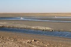 Saltpans Walvis fjärd, Namibia Royaltyfri Foto
