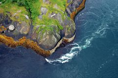 saltstraumen den tidvattens- waven Royaltyfri Bild