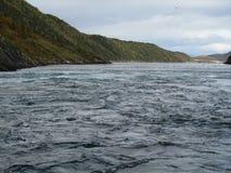 Saltstraumen Norwegen lizenzfreie stockfotografie