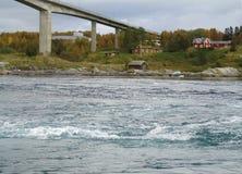 Saltstraumen Norwegen stockfotos