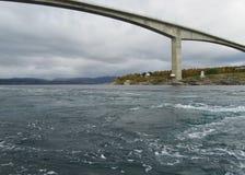 Saltstraumen Norwegen lizenzfreie stockfotos