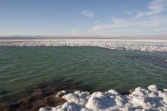 Saltvattens- lagun, Chile Royaltyfri Fotografi