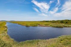 Saltvattens- träsk på Parker River Royaltyfri Foto