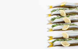 Saltwater τήξη ψαριών που μαρινάρεται με το δεντρολίβανο και το λεμόνι σε ένα μόριο Στοκ φωτογραφία με δικαίωμα ελεύθερης χρήσης