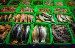Saltwater fishes displayed on green plastic box photo taken in Jakarta Indonesia Stock Photo