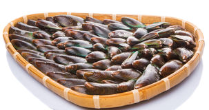 Saltwater Mussel In Wicker Tray I Royalty Free Stock Image