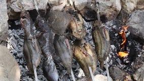 Saltwatersvissen op vleespen stock video