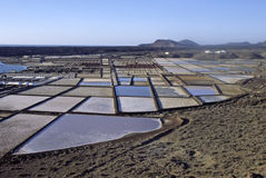 Saltworks. In South Lanzarote royalty free stock photos