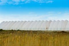 Saltworks in Alicante province Santa Pola Stock Image