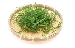 Saltwort on a bamboo colander Stock Photos
