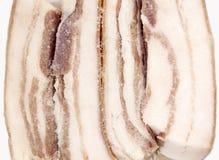 Salty bacon closeup Stock Images