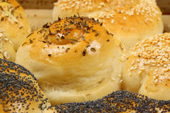 Salty Buns sprinkled with herbs and seeds. Fresh baked salty buns various shaped with herbs, poppyseed and sesame on tinplate Stock Image