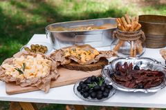 Salty and cheese bar of several kinds of cheese, grapes, olives. And snacks decorated on vintage wooden table. Wedding or other holiday party outdoors Stock Photography