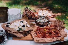 Salty and cheese bar of several kinds of cheese, grapes, olives. And snacks decorated on vintage wooden table. Wedding or other holiday party outdoors Stock Image