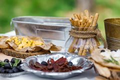 Salty and cheese bar of several kinds of cheese, grapes, olives. And snacks decorated on vintage wooden table. Wedding or other holiday party outdoors Stock Images