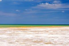 Salty Coastal Landscape royalty free stock photo