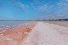 Salty coastline of Lake Crossbie Stock Photos